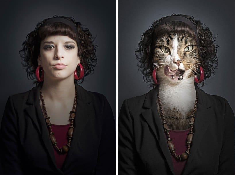 Become Your Own Cat ! 2