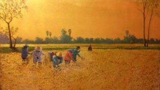 Anurak - Issan Farmers 01