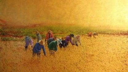 Anurak - Issan Farmers 05