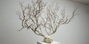 Myeongbeom Kim - Surreal - Sculptures - Installations 12 - feat