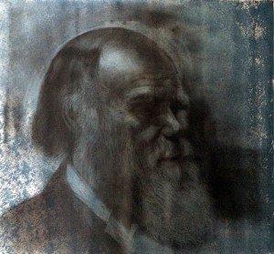 M.CH.R. – Untitled 35 – 60 x 60 – 2-5