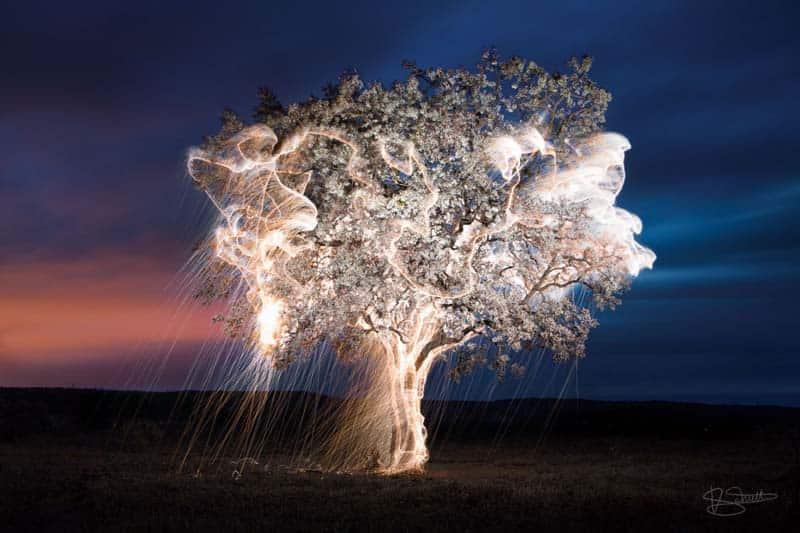 Artist Spotlight - Vitor Schietti 13
