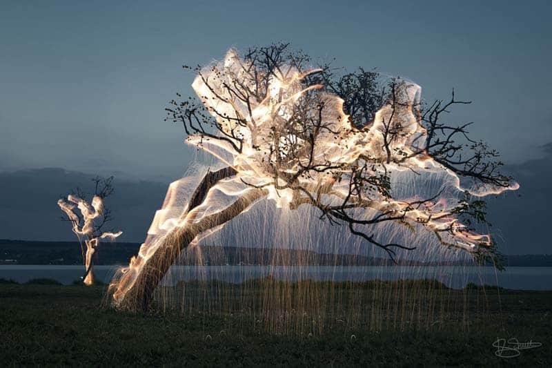 Artist Spotlight - Vitor Schietti 17