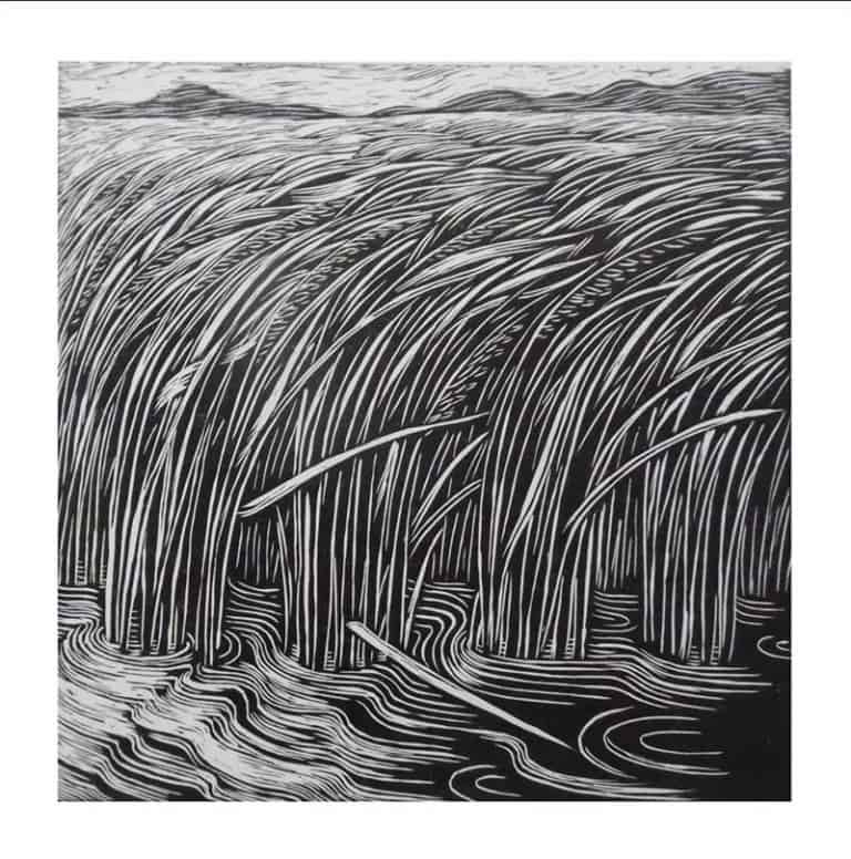 Monthian - Magic Field 04 - 30 x 30 - 2-5