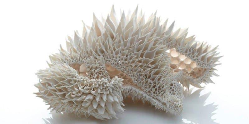 Nuala O Donovan - Sculptural Ceramics 03