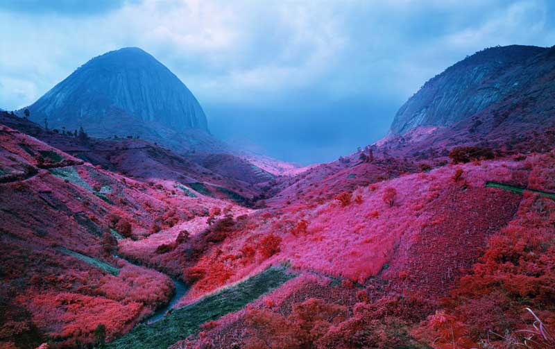 Richard Mosse - Psychedelic Battlefronts 01