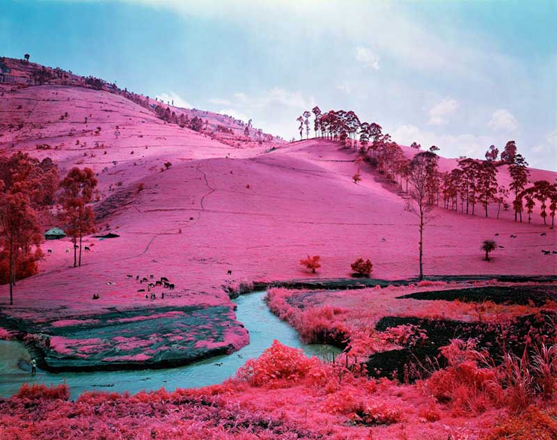 Richard Mosse - Psychedelic Battlefronts 05