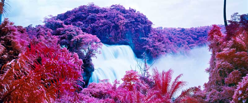 Richard Mosse - Psychedelic Battlefronts 07