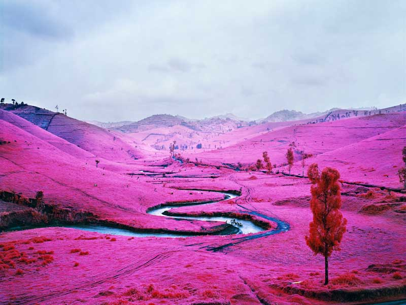Richard Mosse - Psychedelic Battlefronts 11