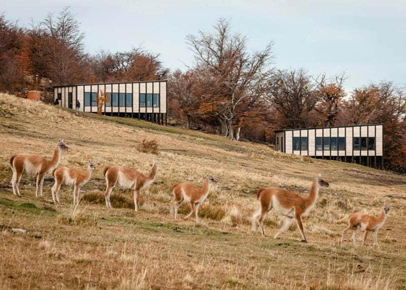 Patagonia Minimalist Chalets - Felipe Assadi - Architects 06