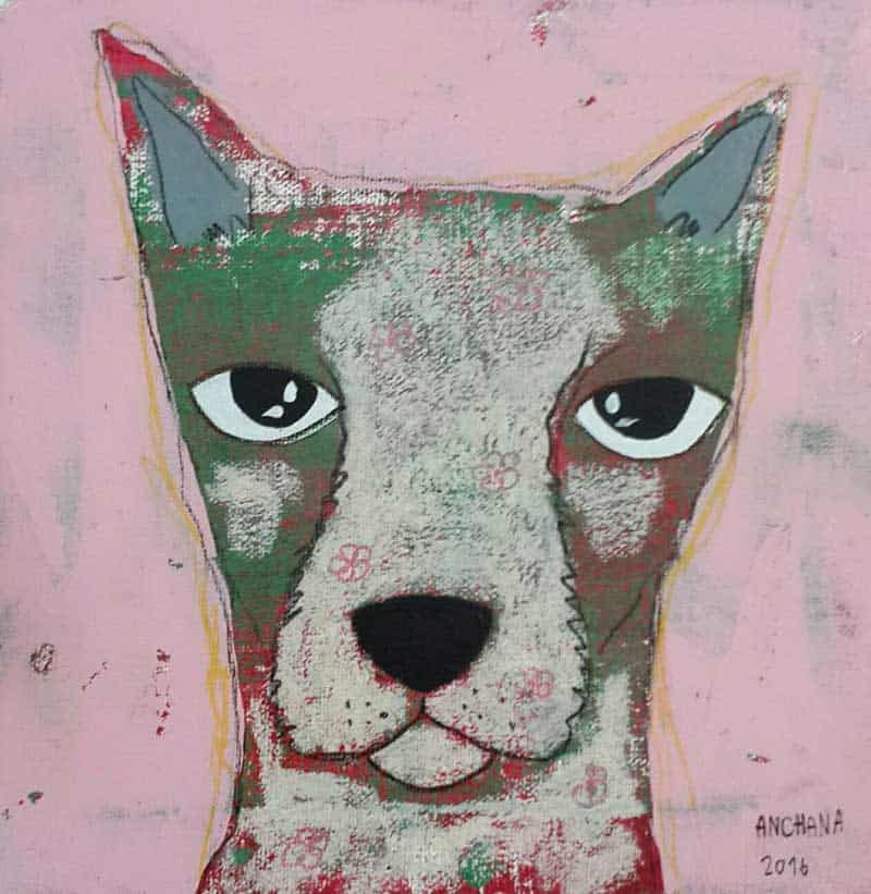 Ja - Gray Dog in pink background - 20 x 20 - 3-9