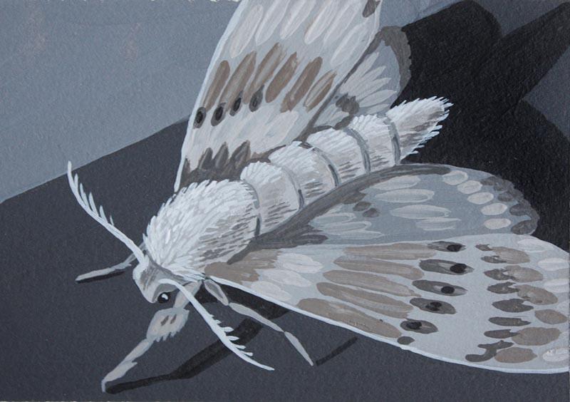 Artist Spotlight - Mercedes Bellido 06