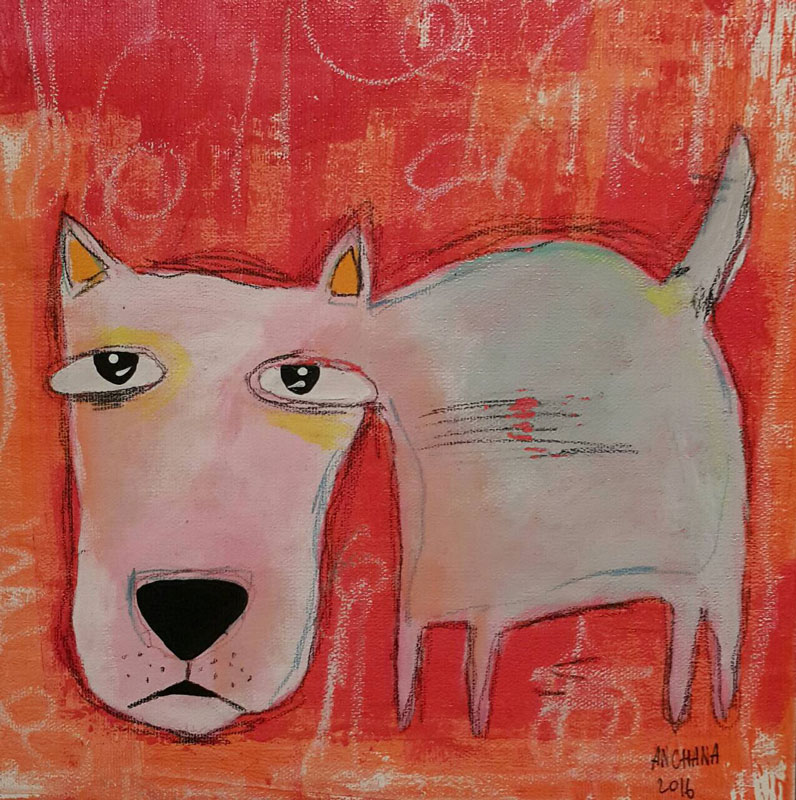 ja-gray-long-face-dog-25-x-25-07