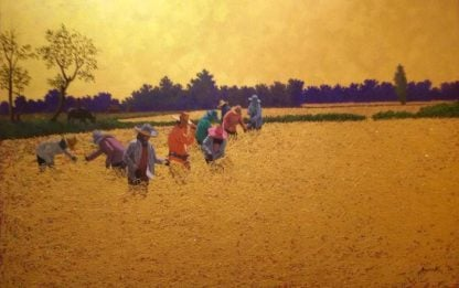anurak-farmer-19-120-x-80-12-edit