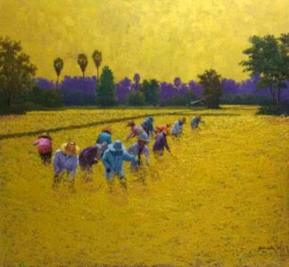 anurak-farmer-20-100-x-100-12