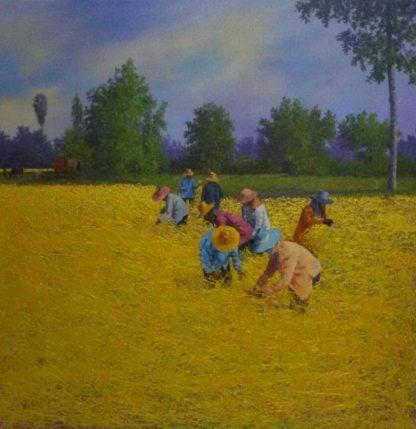 anurak-farmer-21-110-x-120-14