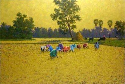 anurak-farmer-23-120-x-80-12