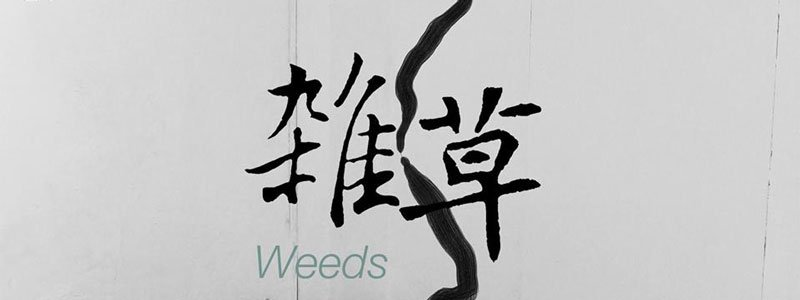 chongqing-dimensions-art-centre-weeds