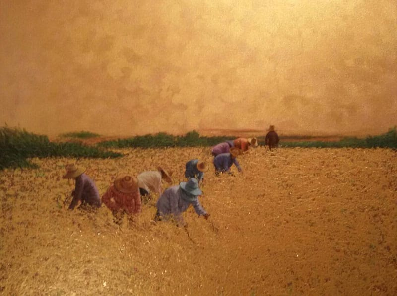 anurak-farmer-24-110-x-100-10