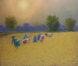 anurak-farmer-25-140-x-120-20