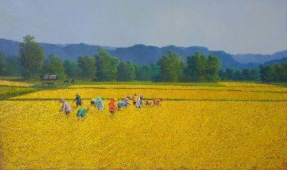 anurak-farmer-26-140-x-120-40