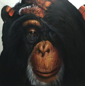 m-ch-r-monkey-150-x-150-30
