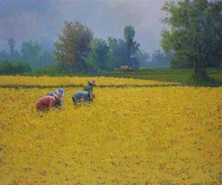 Anurak - Farmers 32 - 60 x 50 - 3-5