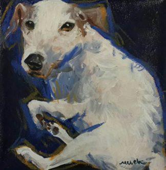 Ja - Jack Russell Terrier 02 - 25 x 25 - 09