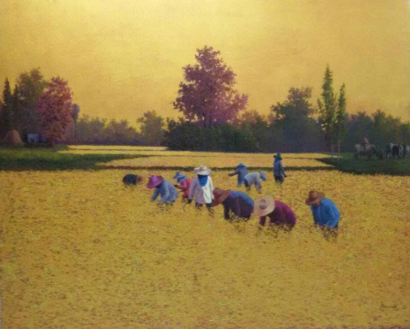Anurak - Farmers 38 - 170 x 140 - 30