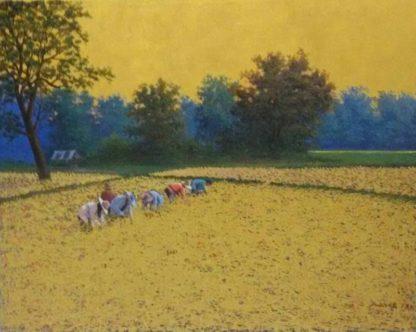 Anurak - Farmers 41 - 100 x 80 - 8-5