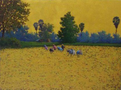 Anurak - Farmers 42 - 80 x 60 - 6-5