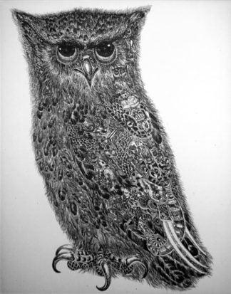 Wittaya - An Owl - 19 x 25 - 3-5