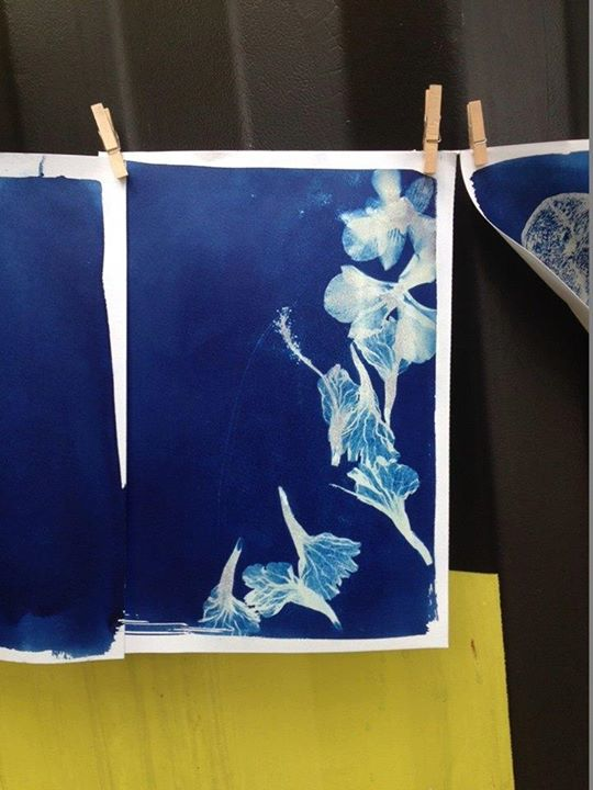 Deck - Cyanotype: The Art of Sun Printing (The oldest forms)