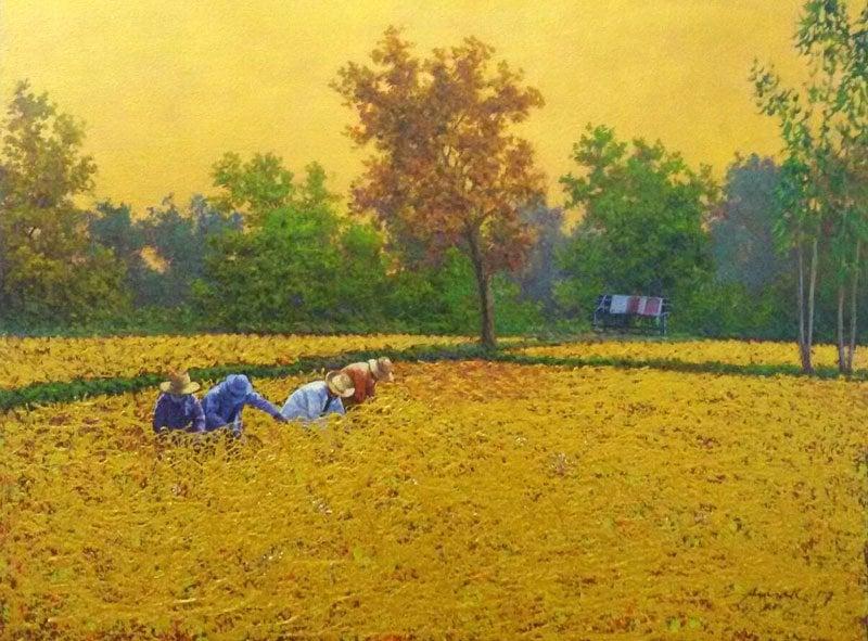 Anurak - Farmers 45 - 70 x 60 - 6