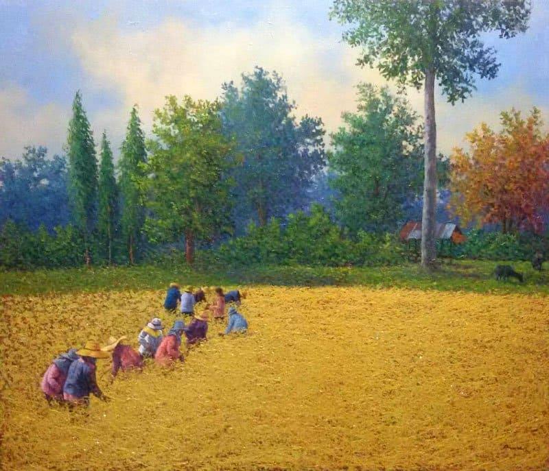 Anurak - Farmers 46 - 143 x 123 - 22