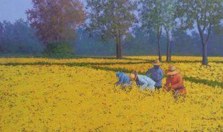 Anurak - Farmers 48 - 45 x 75 - 4-5