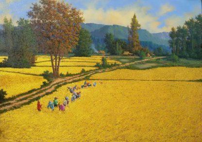 Anurak - Farmers 64 - 237 x 170 - 85