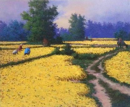 Anurak - Farmers 67 - 50 x 60 - 4