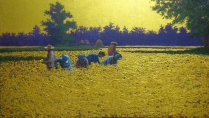 Anurak - Farmers 71 - 75 x 44 - 4-5