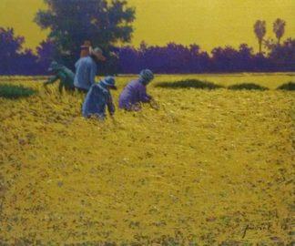 Anurak - Farmers 72 - 60 x 50 - 4