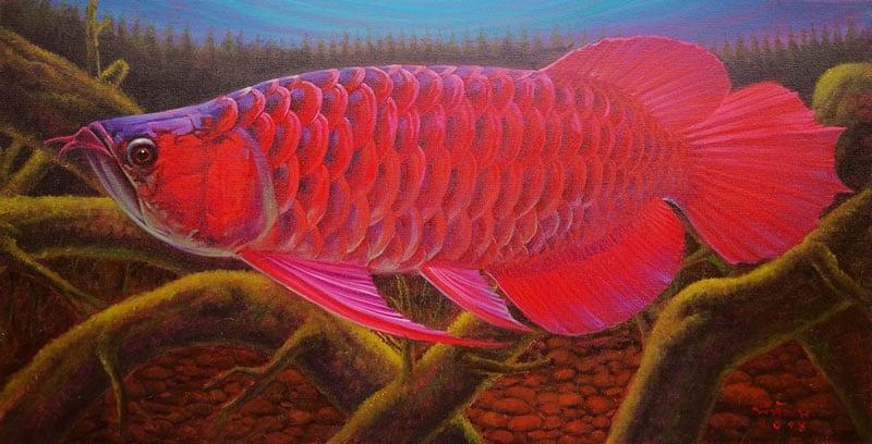 Tanida - Dragon Fish - 50 x 40 - 4-5