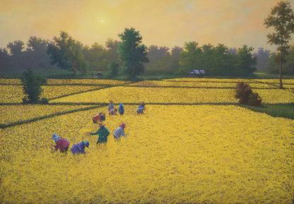 Anurak - Farmers 76 - 220 x 140 - 38