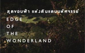 Krabi - Thailand Biennal 2018 Krabi - Edge of the Wonderland