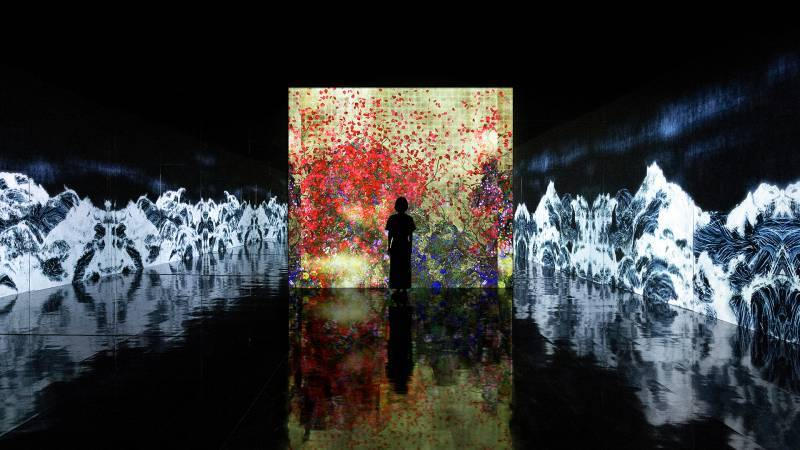 Teamlab - Impermanent lowers Floating in a continuous sea